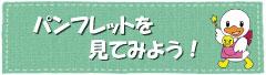 banner_pamphlet